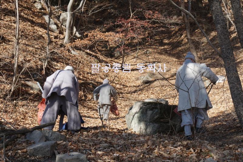 [1월 봉사활동]- 깨끗한 팔공산 만들기 -